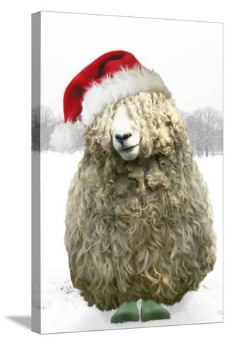 Longwool Sheep Wellington Boots Wearing Christmas Hat--Stretched Canvas Print