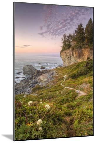Sunset at Patrick's Point, Northern California-Vincent James-Mounted Photographic Print