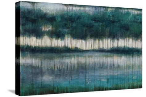 Emerald Waters-Joshua Schicker-Stretched Canvas Print