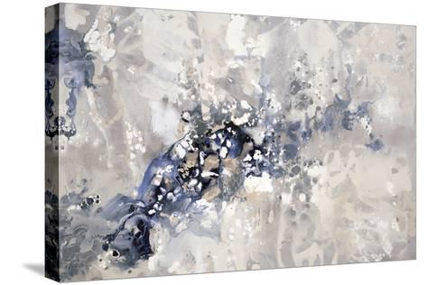 Sedimentary Layers-Kari Taylor-Stretched Canvas Print
