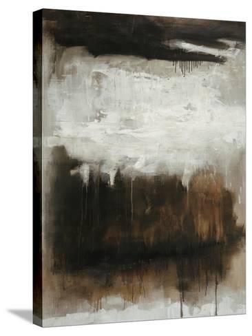 Secret Chamber-Joshua Schicker-Stretched Canvas Print