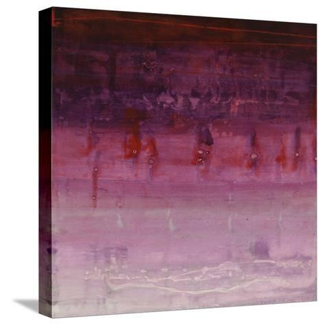 Show Stopper III-Joshua Schicker-Stretched Canvas Print