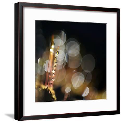 Secret Garden-Ursula Abresch-Framed Art Print