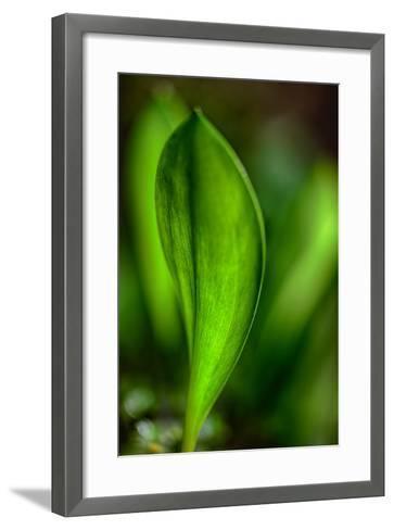 Only in Spring-Ursula Abresch-Framed Art Print
