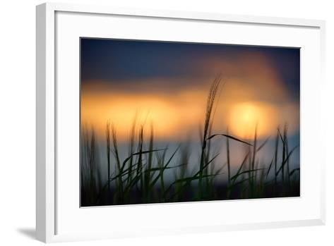 Palouse Sundown-Ursula Abresch-Framed Art Print
