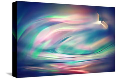 Freedom-Ursula Abresch-Stretched Canvas Print