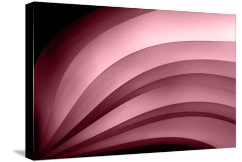 A Fan of Purple - Summer-Ursula Abresch-Stretched Canvas Print