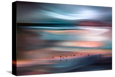 Migrations - Blue Sky-Ursula Abresch-Stretched Canvas Print