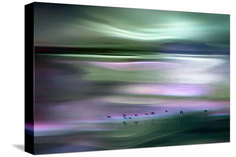 Migrations - Green Sky-Ursula Abresch-Stretched Canvas Print