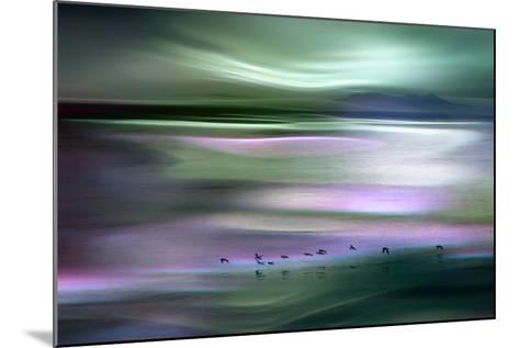 Migrations - Green Sky-Ursula Abresch-Mounted Photographic Print