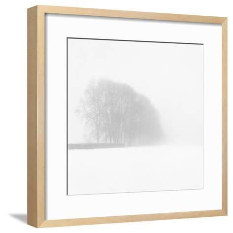 Snowy Trees-Doug Chinnery-Framed Art Print