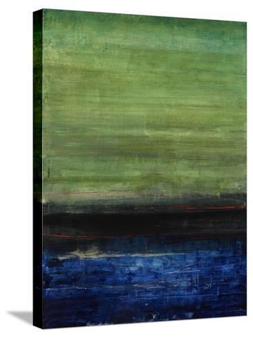 Happy Outlook III-Joshua Schicker-Stretched Canvas Print