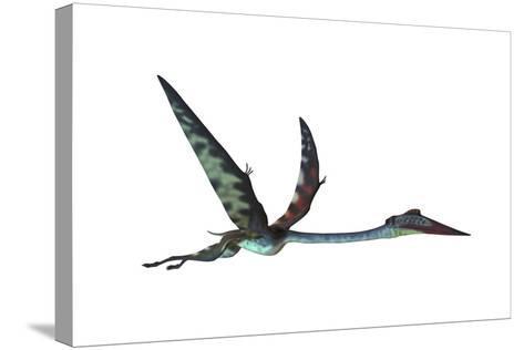 Quetzalcoatlus Predatory Pterosaur--Stretched Canvas Print