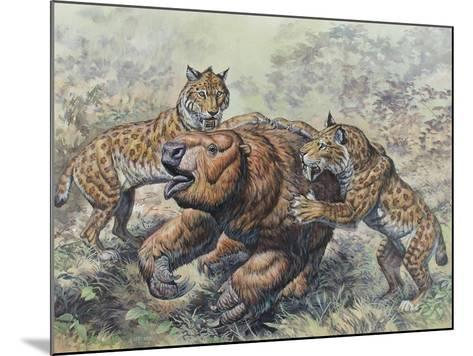 Smilodon Dirk-Toothed Cats Attacking a Glossotherium--Mounted Art Print