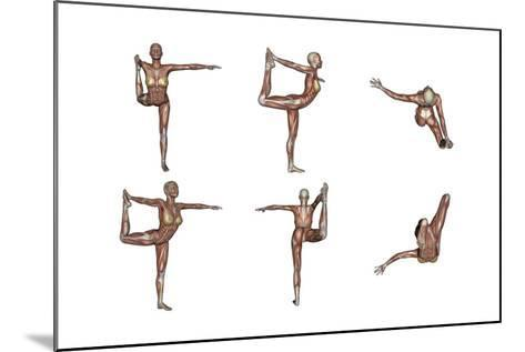 Six Different Views of Dancer Yoga Pose Showing Female Musculature--Mounted Art Print