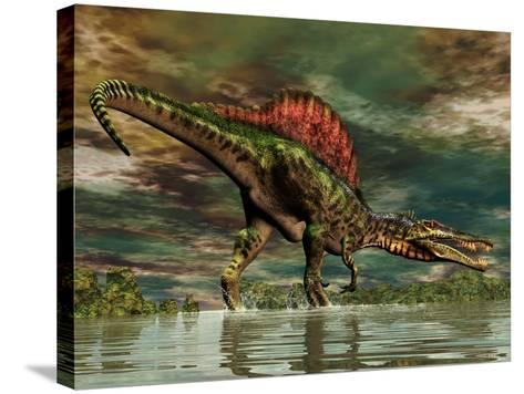 Spinosaurus Was a Large Theropod Dinosaur from the Cretaceous Period--Stretched Canvas Print