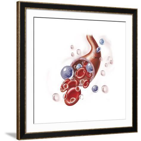 Arteriole with Red Blood Cells, White Blood Cells and Oxygen--Framed Art Print