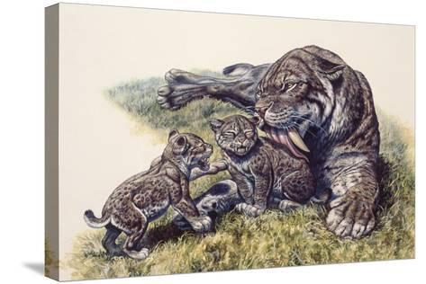 Smilodon Sabertooth Mother and Her Cubs--Stretched Canvas Print