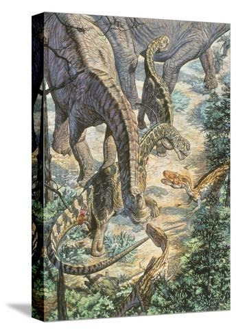Jobaria Sauropods and Afroventor Raptors of the Mid-Cretaceous Period--Stretched Canvas Print