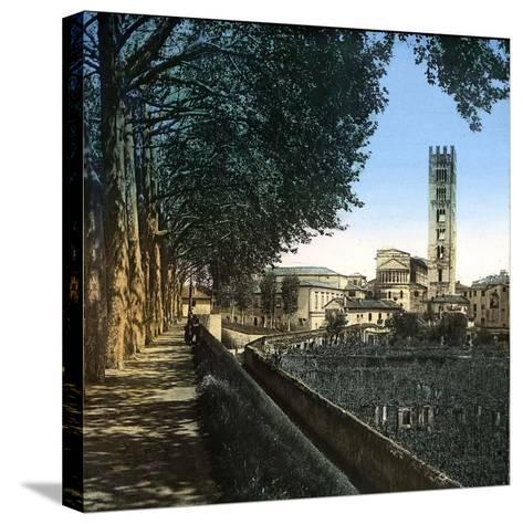Lucca (Italy), the San Frediano Church (1112-1147), Circa 1895-Leon, Levy et Fils-Stretched Canvas Print