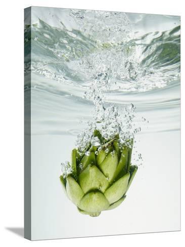 Artichoke in Water-Biwa-Stretched Canvas Print