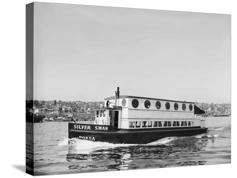 The Silver Swan on Lake Union-Ray Krantz-Stretched Canvas Print