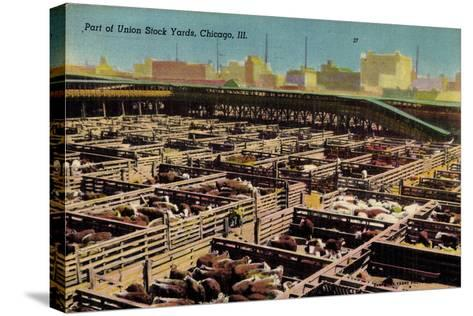 Chicago Illinois Usa, Part of Union Stock Yards, Houses, Rinder--Stretched Canvas Print
