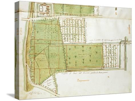 Map of Country Estates of the Court of the Gualtirolo, Commune of Campegine in Castelnuovo Di Sotto--Stretched Canvas Print