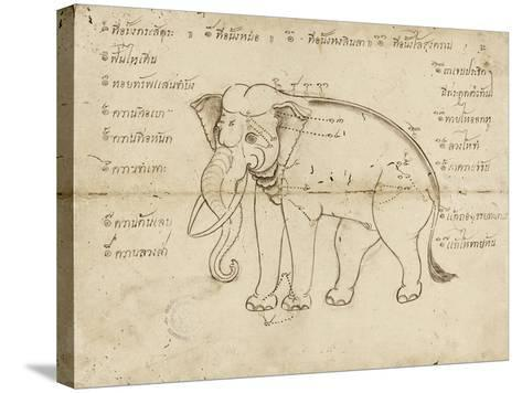 Page of a Manuscript on Elephant Training, Early 20th Century--Stretched Canvas Print