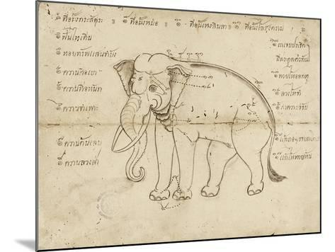 Page of a Manuscript on Elephant Training, Early 20th Century--Mounted Giclee Print