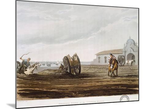 Rio De La Plata, Argentina--Mounted Giclee Print