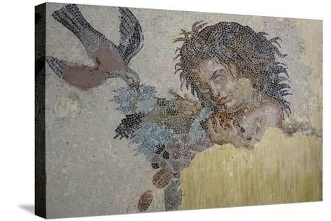 Boy with Dove, Mosaic from Roman Villa in Rabat, Morocco BC--Stretched Canvas Print