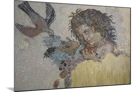 Boy with Dove, Mosaic from Roman Villa in Rabat, Morocco BC--Mounted Giclee Print