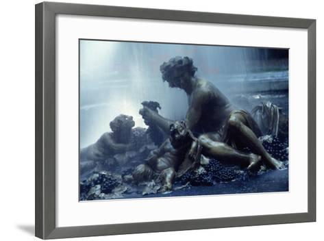 View of Parterre D'Eau and Bacchus Basin, Palace of Versailles , France--Framed Art Print