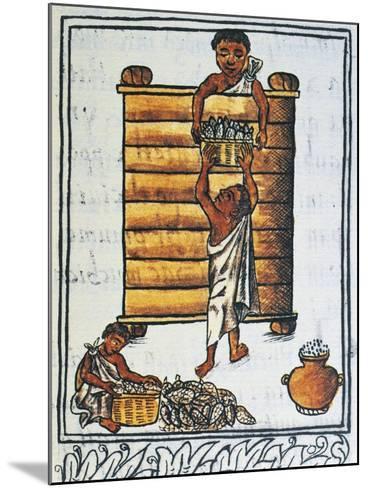 Storage of Corn in the Barn--Mounted Giclee Print