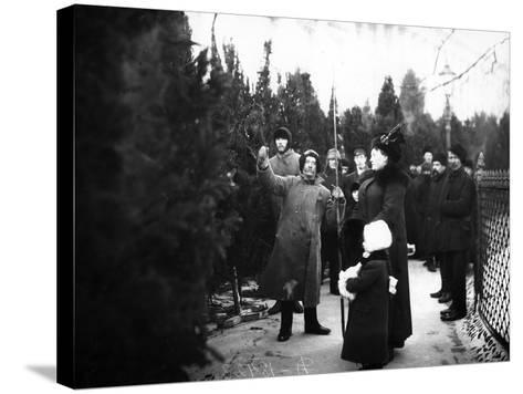 Christmas Trees for Sale, St Petersburg, C.1913--Stretched Canvas Print