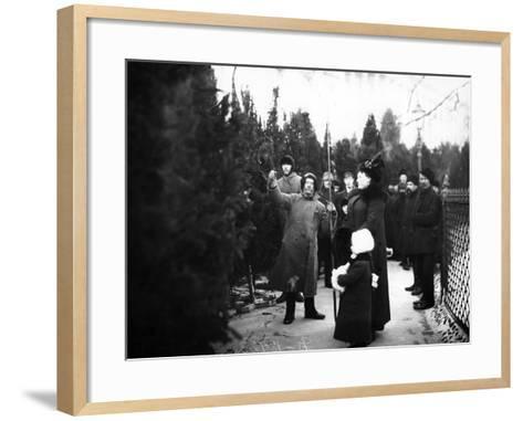 Christmas Trees for Sale, St Petersburg, C.1913--Framed Art Print