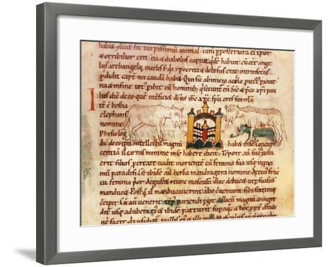 Elephants at the Gates of Paradise, Miniature from Physiologist--Framed Art Print