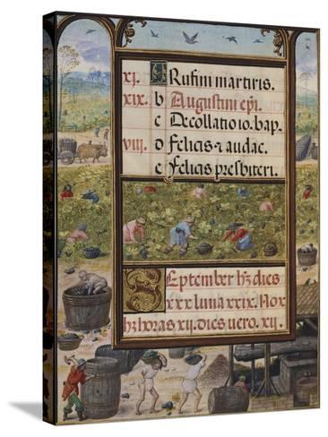 The Month of September, Miniature from the Book of Hours, Portugal 14th Century--Stretched Canvas Print