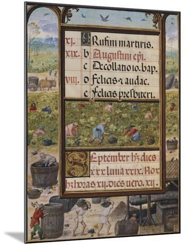 The Month of September, Miniature from the Book of Hours, Portugal 14th Century--Mounted Giclee Print