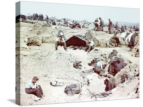 Rheinwiesenlager Sinzig: Wehrmacht Soldiers in a Prisoner of War Temporary Enclosure--Stretched Canvas Print