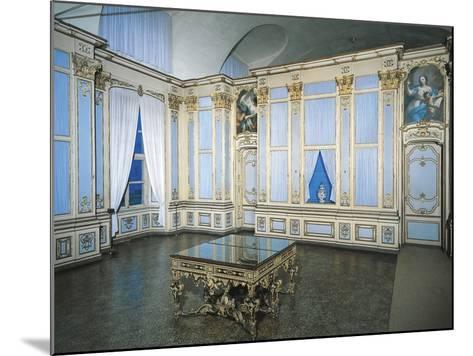Library, Stupinigi's Little Hunting Palace--Mounted Photographic Print