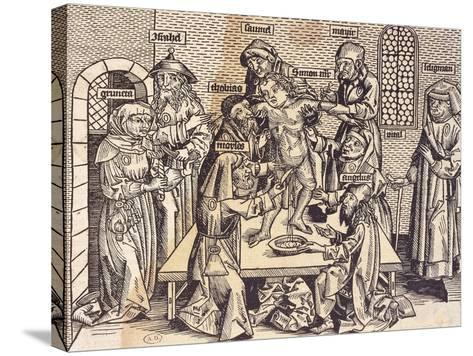 Anatomy Lesson--Stretched Canvas Print