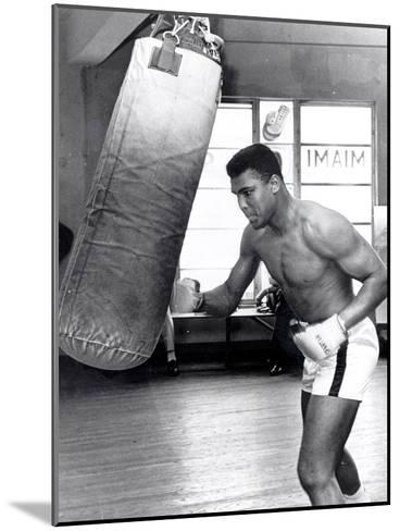 Muhammad Ali Training at the 5th Street Gym, Miami Beach, 27 September 1965--Mounted Photographic Print