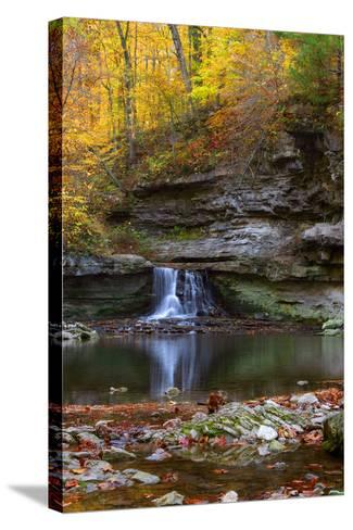Autumn waterfall in McCormics Creek State Park, Indiana, USA-Anna Miller-Stretched Canvas Print