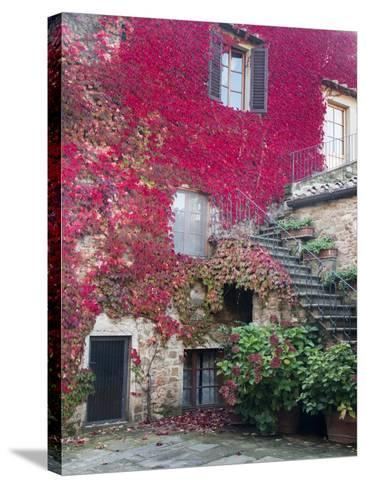 Italy, Tuscany, Volpaia. Red Ivy Covering the Walls of the Buildings-Julie Eggers-Stretched Canvas Print