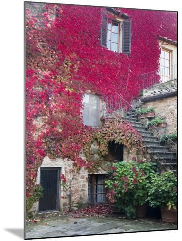 Italy, Tuscany, Volpaia. Red Ivy Covering the Walls of the Buildings-Julie Eggers-Mounted Photographic Print