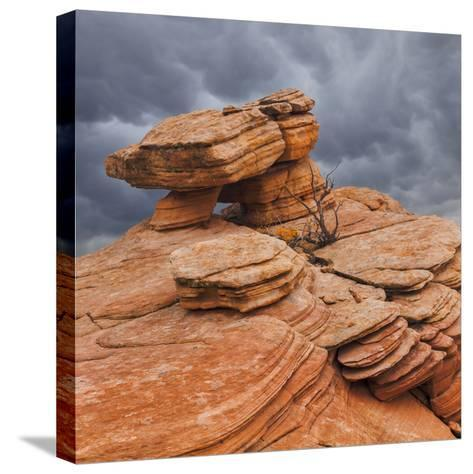 USA, Utah, Dixie National Forest. Sandstone Formation in Yant Flats-Jaynes Gallery-Stretched Canvas Print