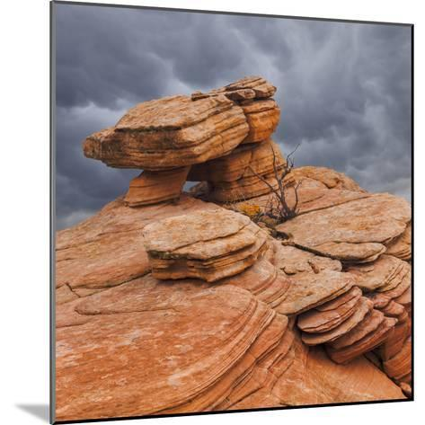 USA, Utah, Dixie National Forest. Sandstone Formation in Yant Flats-Jaynes Gallery-Mounted Photographic Print