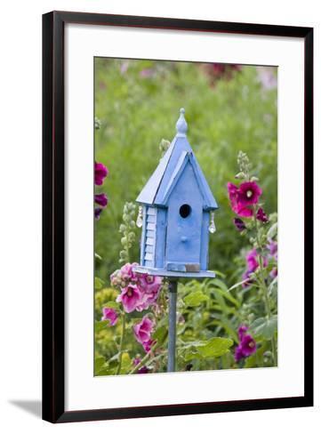 Blue Birdhouse Near Hollyhocks. Marion, Illinois, Usa-Richard ans Susan Day-Framed Art Print